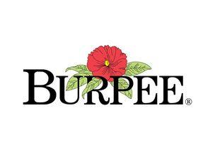Burpee Coupon