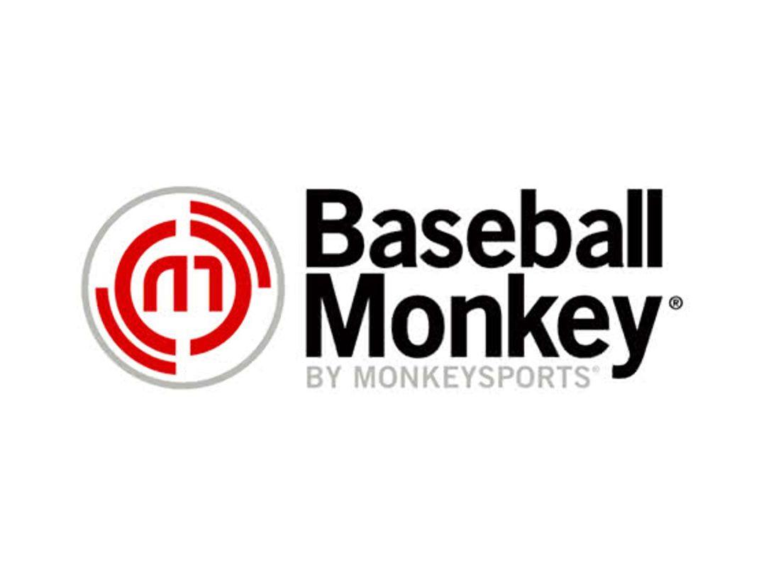 Baseball Monkey Discount