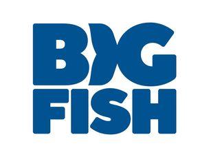 Big Fish Games Coupon