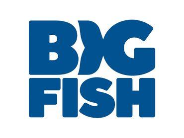 Big Fish Games Discount