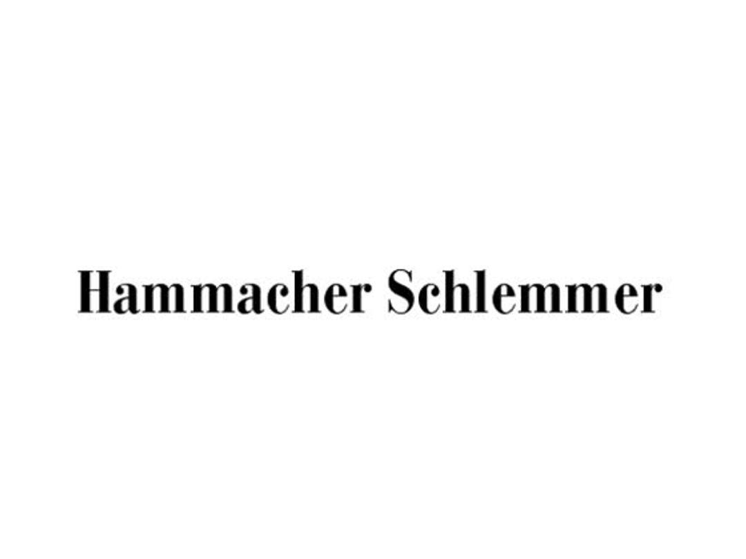 Hammacher Schlemmer Discount