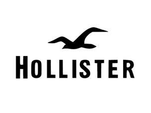 Hollister Coupon