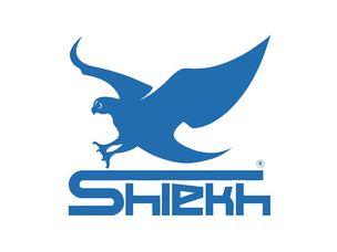 Shiekh Shoes Coupon