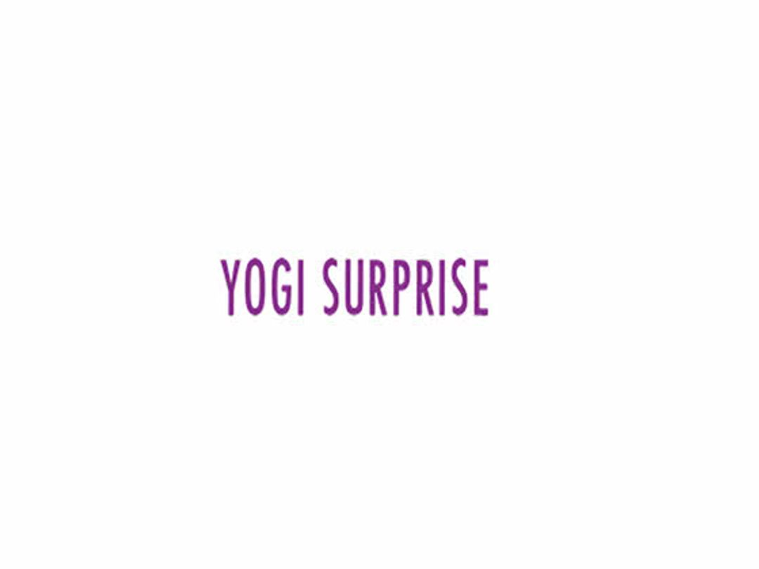 Yogi Surprise Discount