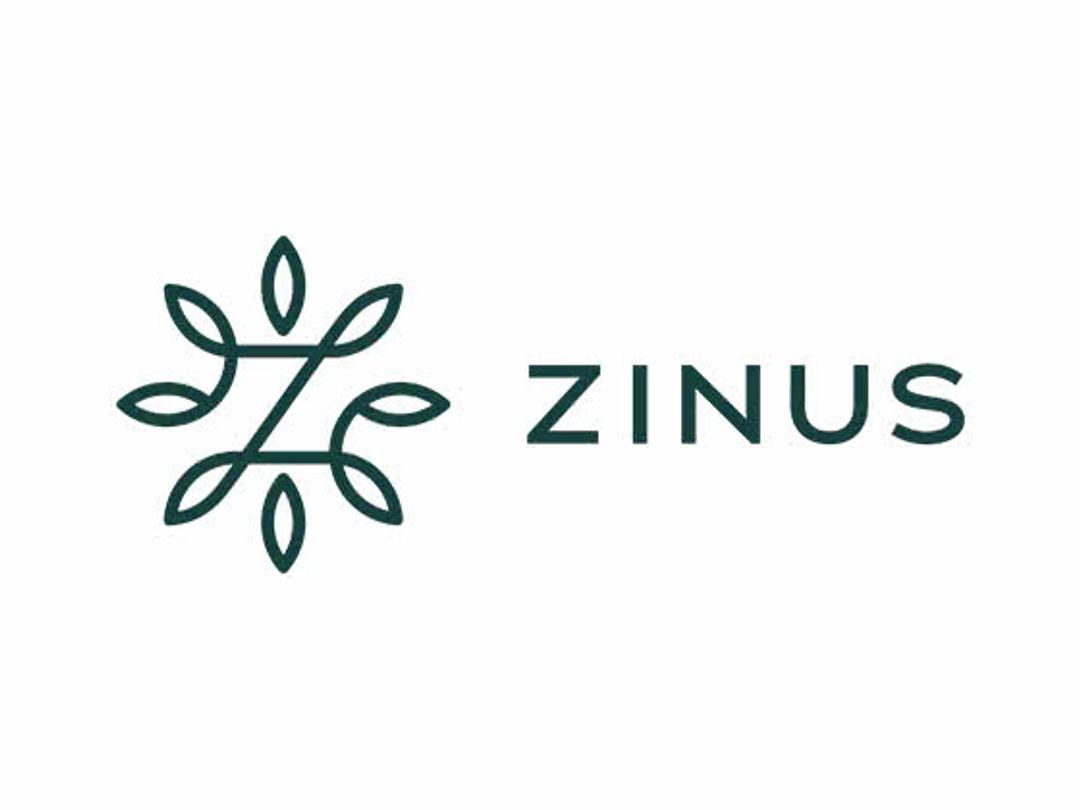 Zinus Discount